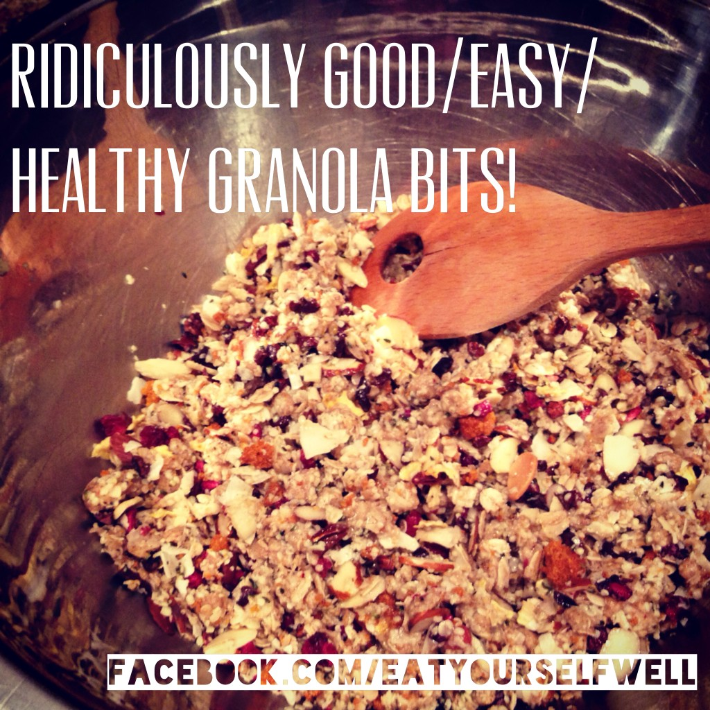 Ridiculously Good/Easy/Healthy Granola Bits from EatYourselfWell.com