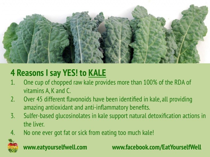 4 Reasons I say YES to Kale - Eat Yourself Well