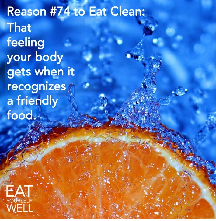 Friendly Food!
