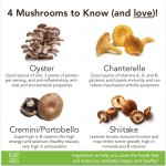 Magnificent Mushrooms: 4 to Know