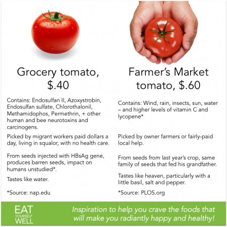 The Farmer's Market Organic Tomato, vs. the Grocery Tomato